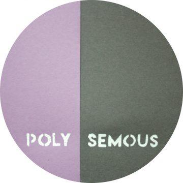 timea-benedek_polysemous